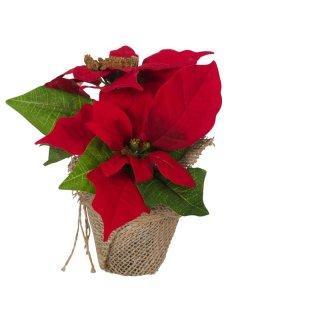 Bambelaa! Weihnachtsstern künstlich Rot