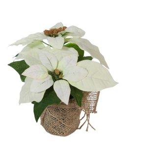 Bambelaa! Weihnachtsstern künstlich Weiß