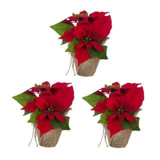 Bambelaa! 3 Stück Weihnachtsstern künstlich Rot und Weiß
